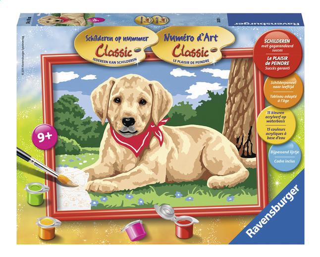 Image pour Ravensburger Numéro d'art Adorable Labrador à partir de ColliShop