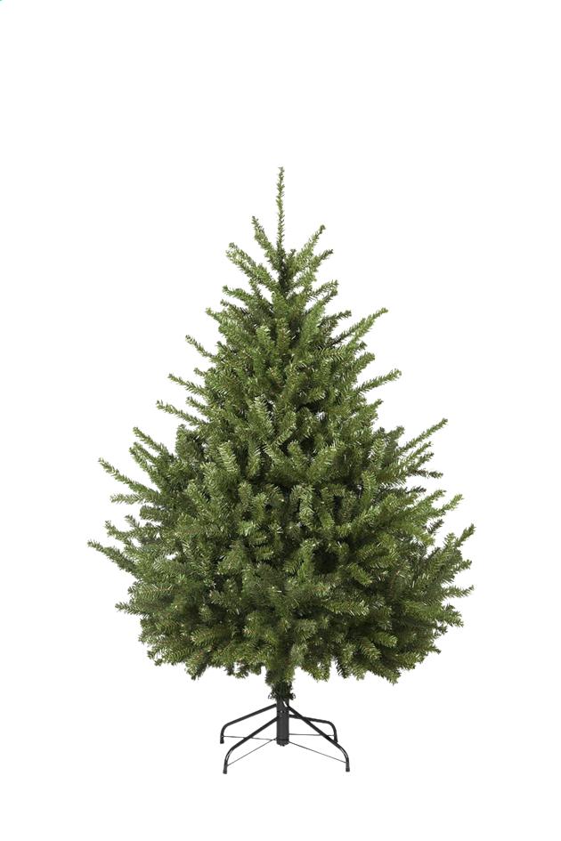 Afbeelding van Kerstboom Lismore 210 cm from ColliShop
