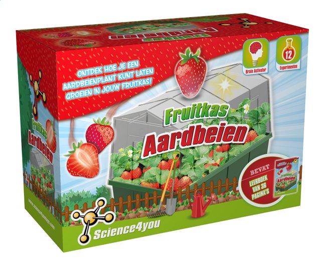 Image pour Science4you Fruitkas Aardbeien NL à partir de ColliShop