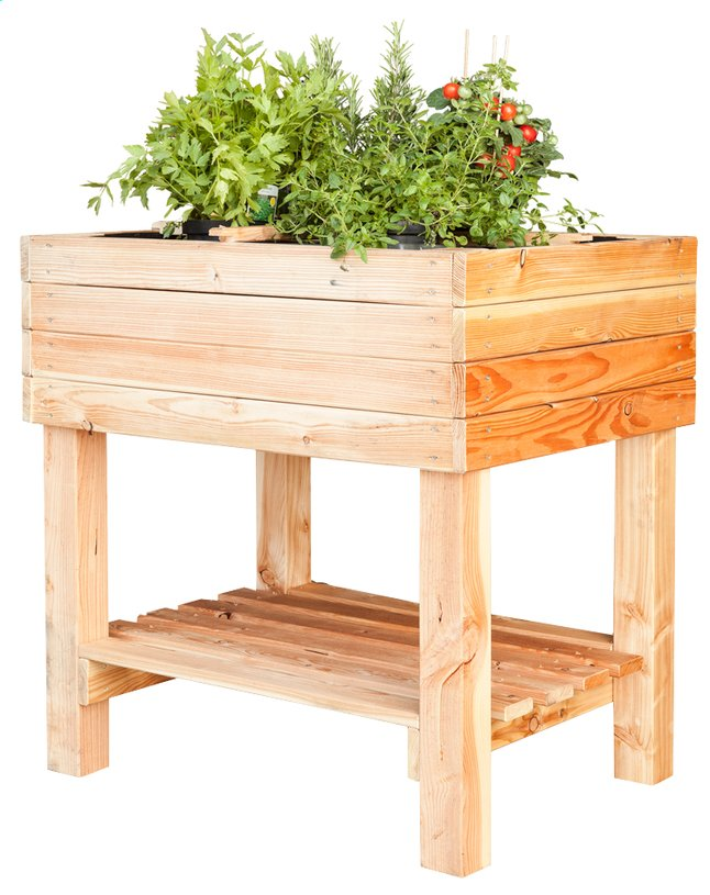 table potager pinus 80 x 60 cm collishop