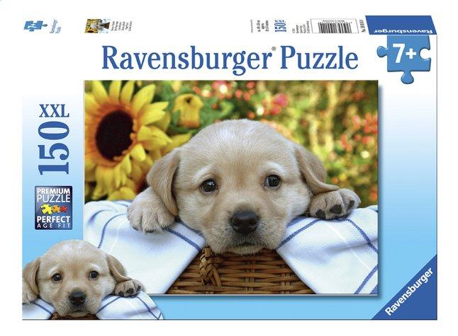 Image pour Ravensburger puzzle XXL Le pique-nique à partir de ColliShop