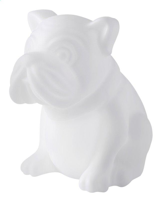 Afbeelding van bigben bluetooth speaker hond met lichten wit from ColliShop