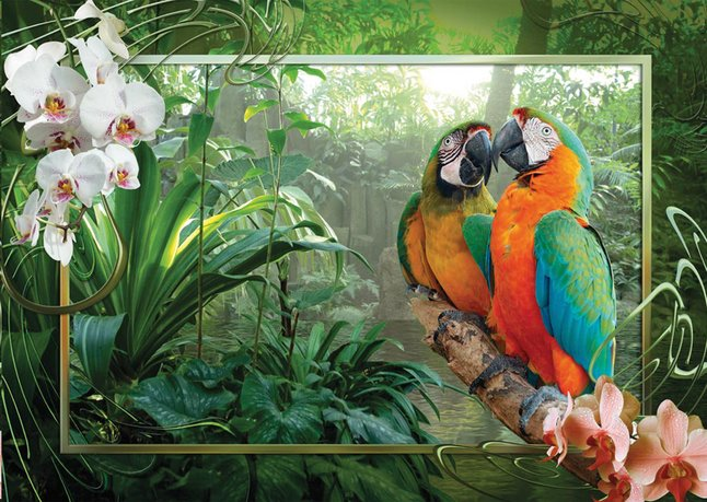 Afbeelding van Ravensburger puzzel Papegaaien in de jungle from ColliShop