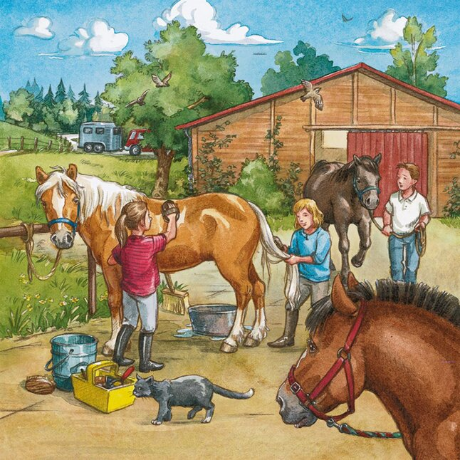 Afbeelding van Ravensburger 3-in-1 puzzel Manege from ColliShop