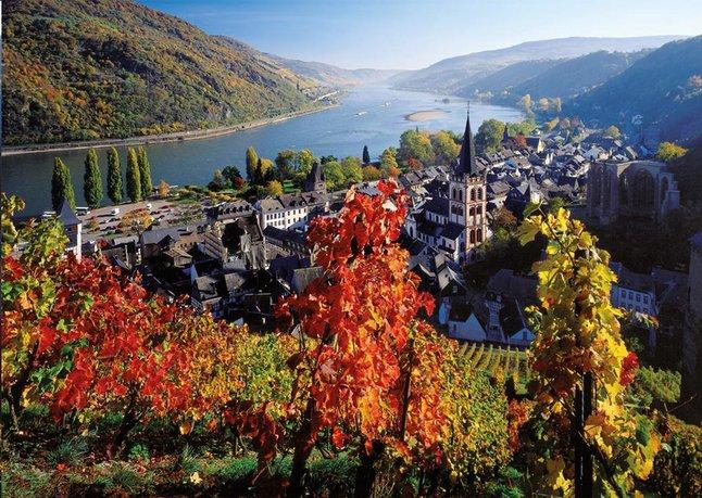 Afbeelding van Ravensburger puzzel Wijnbouw langs de Rijn from ColliShop