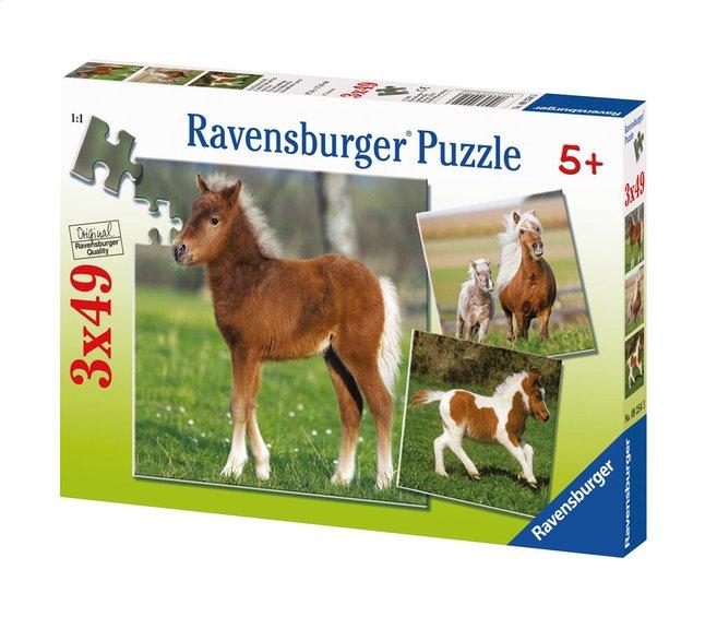 Image pour Ravensburger puzzle 3 en 1 L'amitié des poneys à partir de ColliShop