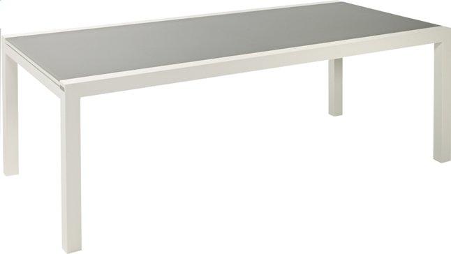 Afbeelding van Jati & Kebon verlengbare tuintafel Livorno lichtgrijs/wit 220 x 106 cm from ColliShop