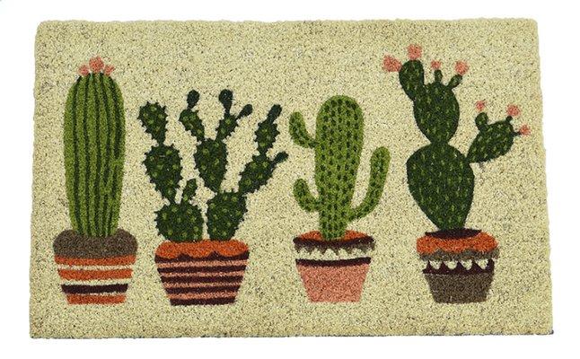 Afbeelding van Deurmat Kokos cactus L 60 x B 40 cm from ColliShop