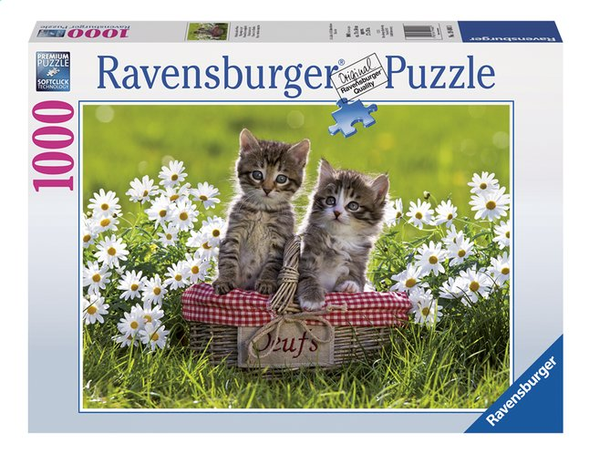 Afbeelding van Ravensburger puzzel Picknick in de wei from ColliShop
