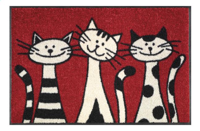 Afbeelding van Wash+dry Deurmat Three cats 50 x 75 cm from ColliShop