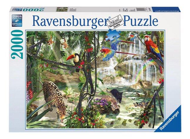 Afbeelding van Ravensburger puzzel Jungle impressies from ColliShop