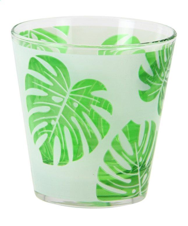 Image pour Cerve 6 verres Paradise Leaf 25 cl à partir de ColliShop