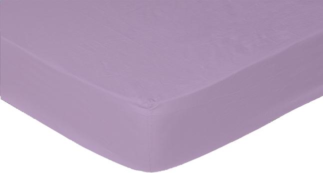 Image pour Sleepnight drap-housse mauve en coton 160 x 200 cm à partir de ColliShop