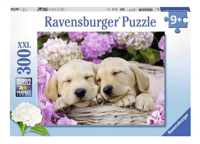 Afbeelding van Ravensburger XXL puzzel Schattige hondjes in een mand from ColliShop