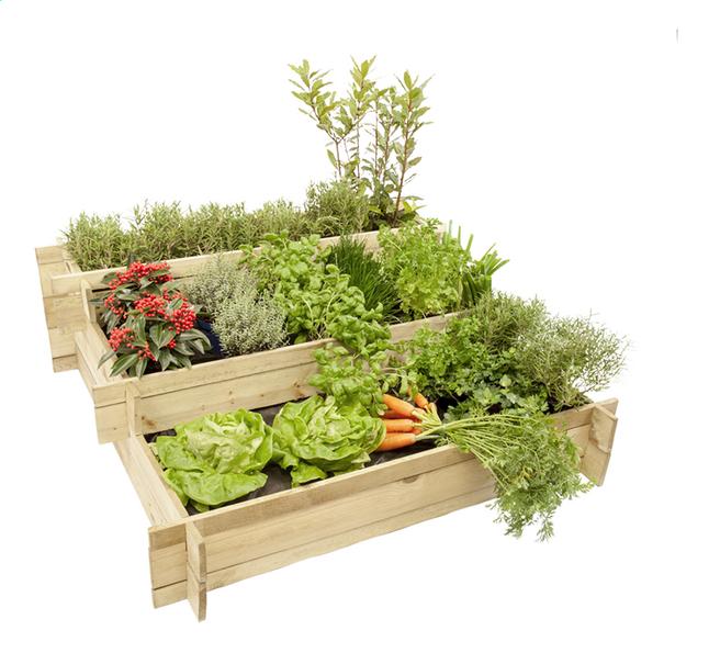 Hillhout vierkantemetertuin Mini Garden