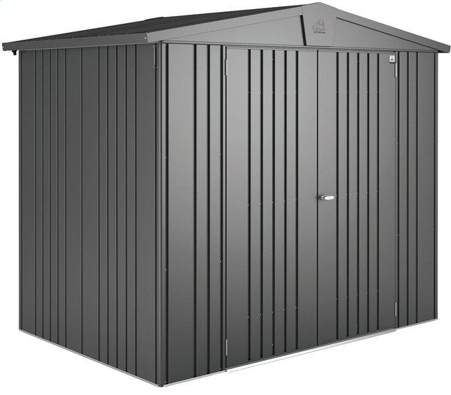 Image pour Biohort abri de jardin Europa gris foncé 228 x 316 cm à partir de ColliShop